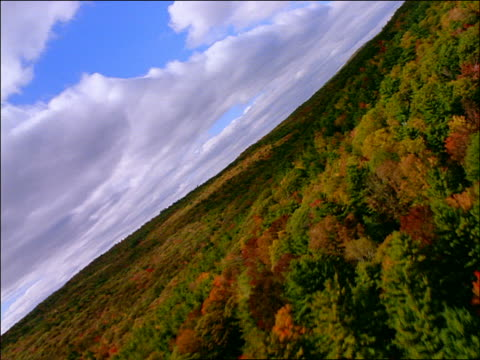 AERIAL hilly forest in Autumn / New England