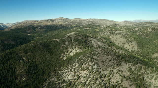 hilly landscape in toiyabe national forest - californian sierra nevada stock videos and b-roll footage