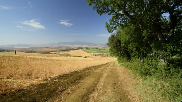 hilly tuscan countryside with wheat fields in summer, pienza, val d'orcia, siena province, tuscany, italy - anhöhe stock-videos und b-roll-filmmaterial