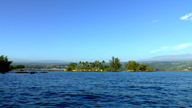 hilo bay - big island of hawaii - mauna loa stock videos and b-roll footage