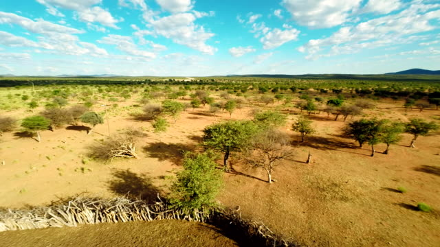ヘリヒンバ族の村 - 遊牧民族点の映像素材/bロール