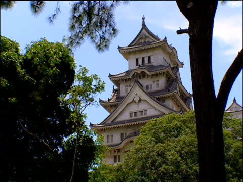 himeji castle rising out of forest japan - 城点の映像素材/bロール