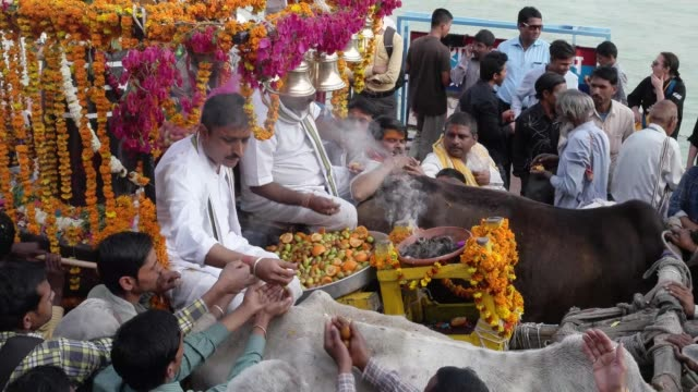 vídeos y material grabado en eventos de stock de hindu priests in a chariot with shiva linga or lingam, distributes 'prasad' / haridwar is an ancient city and important hindu pilgrimage site, where... - dios