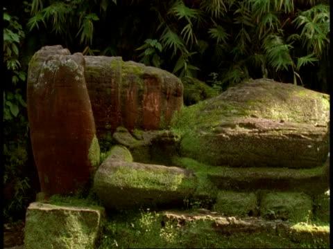 cu hindu statue in jungle, bandhavgarh national park, india - bandhavgarh national park stock videos and b-roll footage