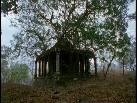 wa hindu temple in jungle, bandhavgarh national park, india - bandhavgarh national park stock videos and b-roll footage