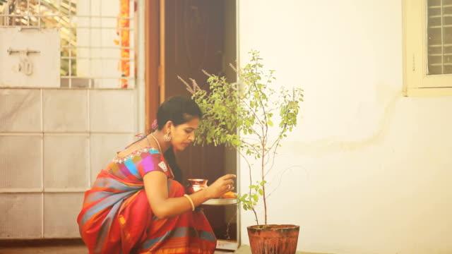 hindu woman worships basil plant - praying stock videos & royalty-free footage