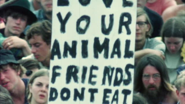 MONTAGE Hippie audience at Woodstock Festival with placard against eating meat / Bethel, New York, USA