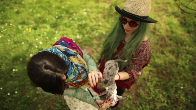 vídeos de stock, filmes e b-roll de meninas de hippie segurando um cachorrinho - cabelo verde