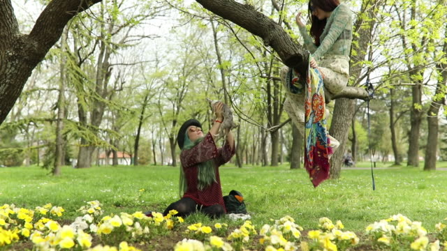 vídeos de stock, filmes e b-roll de meninas de hippie em dia de primavera - cabelo verde