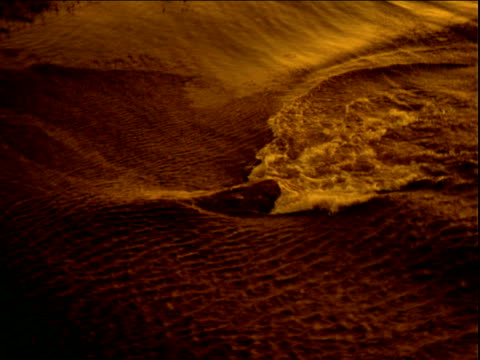 hippopotamus emerges and submerges from river bathed in golden light - camminare nell'acqua video stock e b–roll