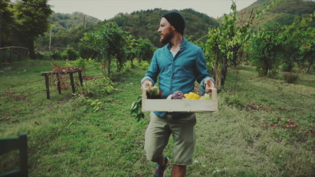 hipster farmer man deliverying grocery box - farm to table stock videos & royalty-free footage