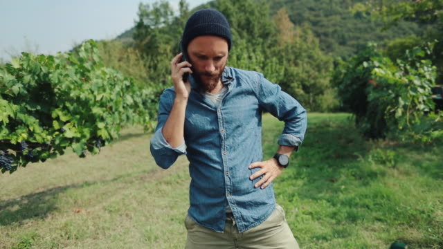hipster man delivering grocery box in time - ordering stock videos and b-roll footage
