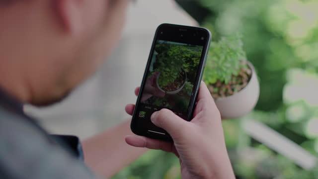 vídeos de stock, filmes e b-roll de homem hipster tirar foto bonsai plantas de árvore parecendo relaxado - jardinagem