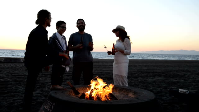 hipsters toast each other at the beach bonfire - cooler container stock videos and b-roll footage