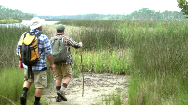 Hispanic boy and father hiking, view of wetlands