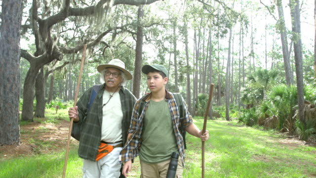hispanic boy and grandfather hiking in a park - over 80 stock videos & royalty-free footage