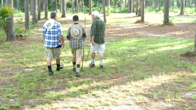 hispanic boy, father and grandfather hiking in a park - 80 89 years stock videos & royalty-free footage