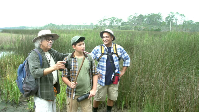 hispanic boy, father, grandfather with views of wetlands - 80 89 years stock videos & royalty-free footage