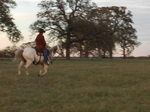 vídeos de stock, filmes e b-roll de hispânica cowboy passeios a cavalo branco no texas ranch - animal de trabalho