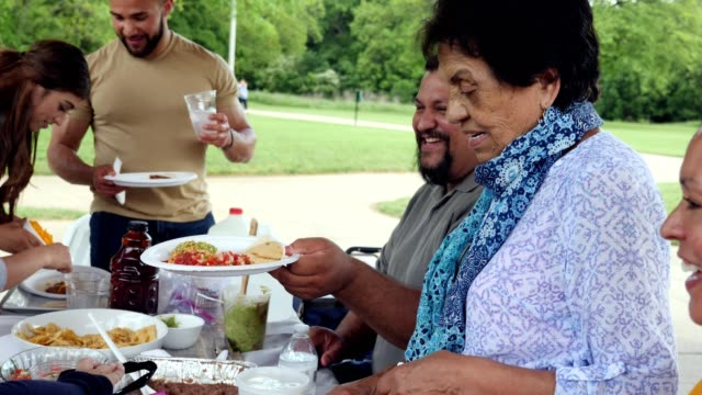 hispanic family enjoys a family reunion in the park - latin american and hispanic ethnicity stock videos & royalty-free footage