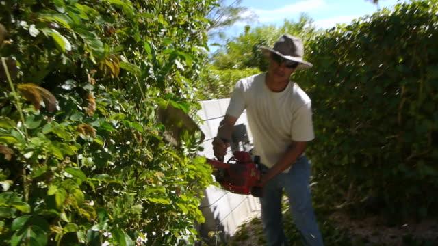 ms zi zo hispanic gardener operating gasoline powered hedge trimmer to trim garden hedge / rancho mirage, california,  usa - shears stock videos & royalty-free footage