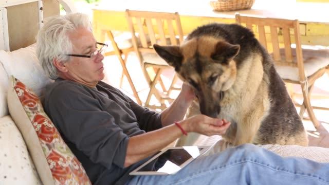 hispanic man in hammock - dog biscuit stock videos & royalty-free footage