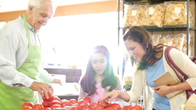 hispanic mother is teaching daughter how to pick out tomatoes - mid adult women stock videos & royalty-free footage