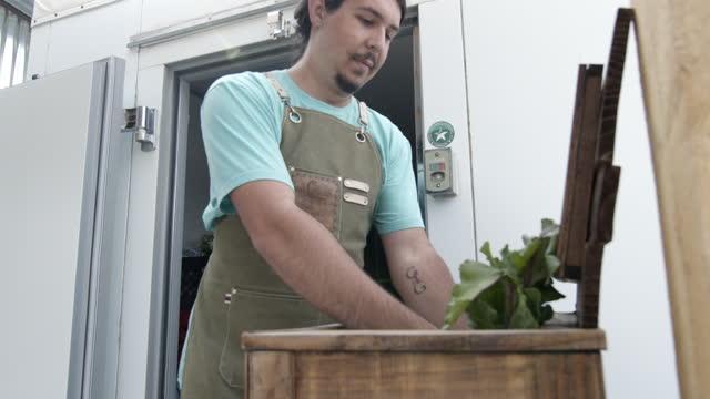 vídeos de stock, filmes e b-roll de jovem hispânico de 20 anos carregando produtos verdes e mantimentos orgânicos frescos em uma caixa isolada reutilizável para ser entregue em casa de uma fazenda de varejo local orgânica - pequeno