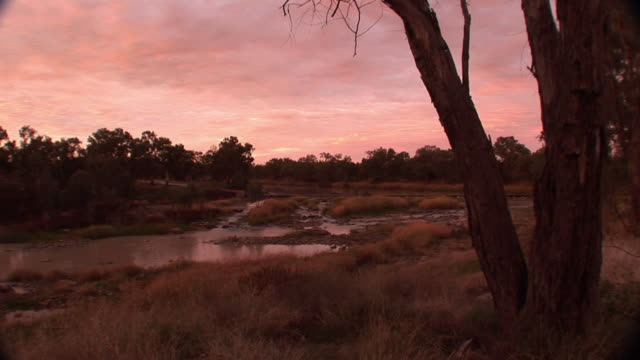 ws historic aboriginal fish traps on darling river, brewarrina, new south wales, australia - fishing industry stock videos & royalty-free footage