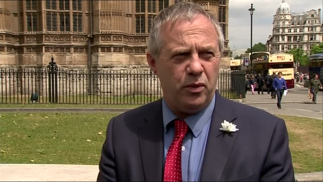 john mann and campaigners lay flowers outside parliament england london westminster ext various shots of john mann mp and child abuse campaigners... - cyril smith politician stock videos & royalty-free footage