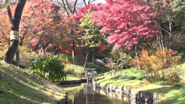 historic japanese garden - oriental garden stock videos and b-roll footage