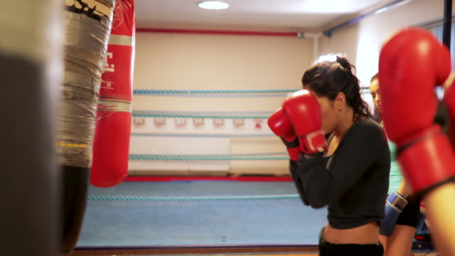 hitting the bag - kickboxing stock videos and b-roll footage