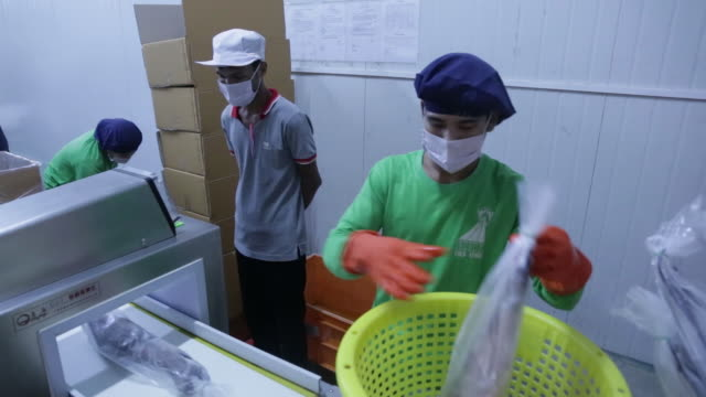 hlaing htate khaung coldstore seafood processing plant operated by kyae yaung zin trading co in yangon myanmar on wednesday aug 29 2018 - seafood stock videos and b-roll footage