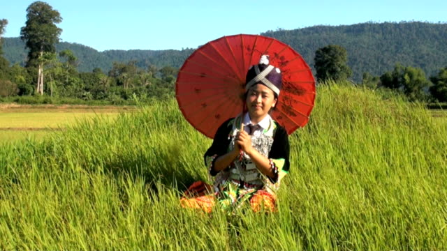 hmong from laos on rice paddy - laos stock videos & royalty-free footage