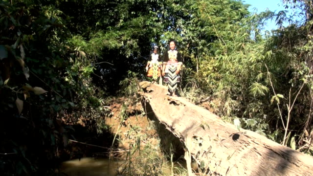 hmongs from laos walking on tree trunk - asian tribal culture stock videos and b-roll footage