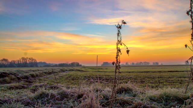 vídeos y material grabado en eventos de stock de t/l hoarfrost que cubre el campo al amanecer - escarcha