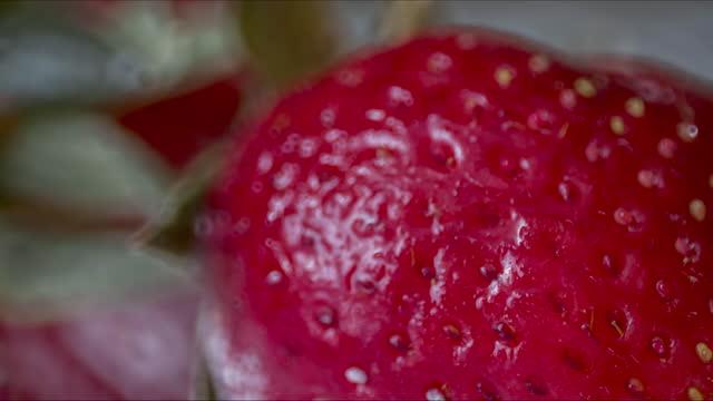 hoarfrost erdbeeren - eingefroren stock-videos und b-roll-filmmaterial