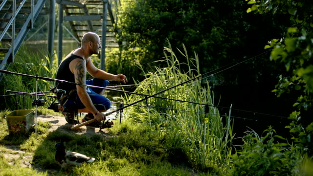 stockvideo's en b-roll-footage met hobby fishermen relaxing and angling at a lake in a nature reserve near berlin - alleen één mid volwassen man