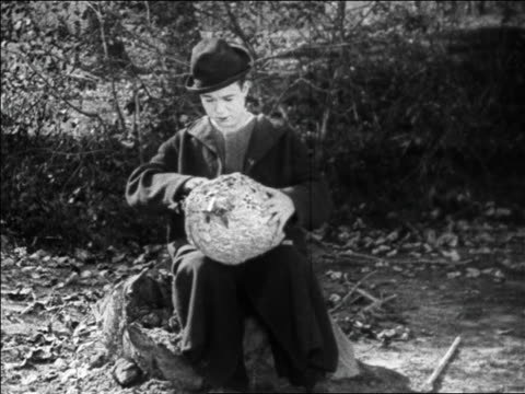 b/w 1925 hobo (harry langdon) sticking hand into bee hive swarming with bees / feature - tramp stock videos & royalty-free footage