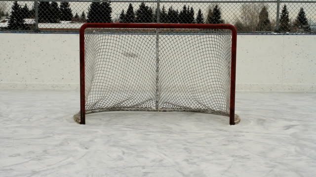 hockey pucks shot into empty net - netting stock videos and b-roll footage