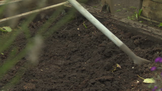 a hoe is used to turn soil in a raised bed on a uk allotment. - 野菜畑点の映像素材/bロール