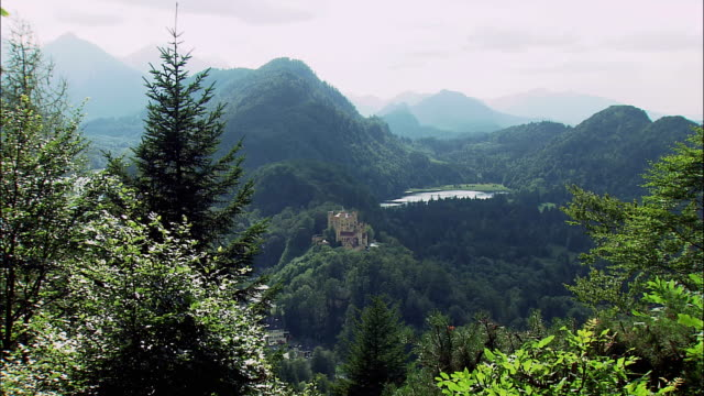 ws hohenschwangau castle in mountain landscape, trees in foreground, bavaria, germany - tree fort stock videos & royalty-free footage