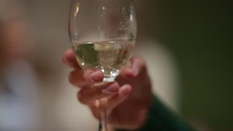 vídeos y material grabado en eventos de stock de sosteniendo una copa de vino - vida sencilla