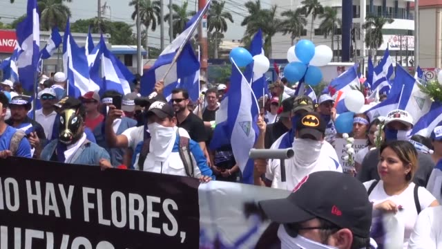 holding flags and flowers thousands of nicaraguans partake in the flowers march in managua to demand justice for the children and adolescents killed... - managua stock videos & royalty-free footage