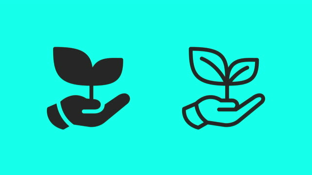 holding growing plant icons - vector animate - outline stock videos & royalty-free footage