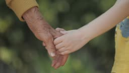 Holding Hands. Detail of a Child's Hands Holding the Senior Woman Hands