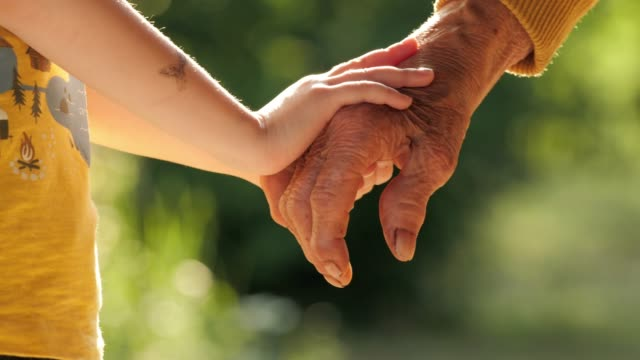 holding hands. detail of a child's hands holding the senior woman hands - retirement stock videos & royalty-free footage