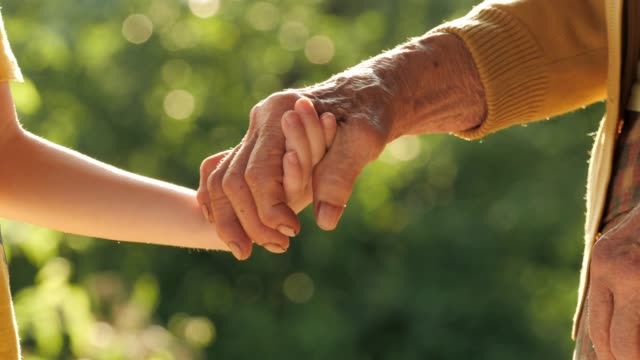 holding hands. detail of a child's hands holding the senior woman hands - granddaughter stock videos & royalty-free footage