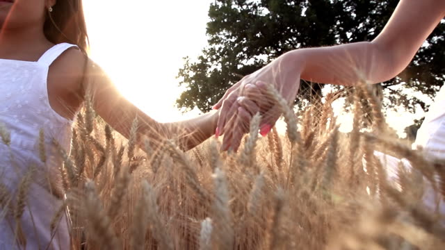 HD SUPER SLOW-MOTION: Holding Hands In Golden Wheat