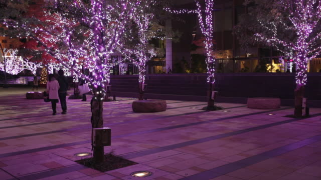 holiday lights at night - roppongi stock videos and b-roll footage